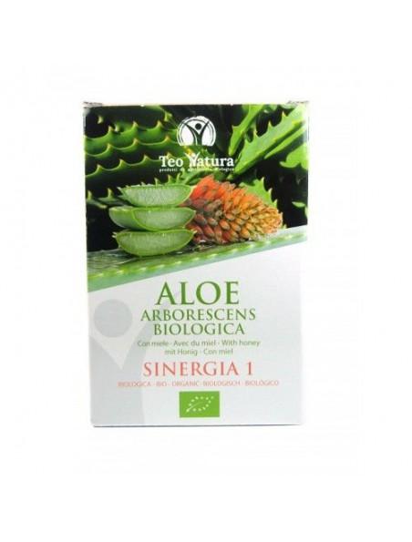 Aloé arborescens Bio - Recette du père Zago 750 ml - Teo Natura