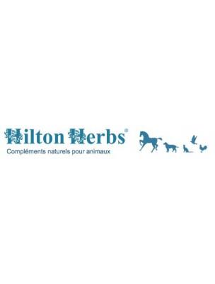 https://www.louis-herboristerie.com/10469-home_default/immune-support-defenses-immunitaires-du-chien-125g-hilton-herbs.jpg