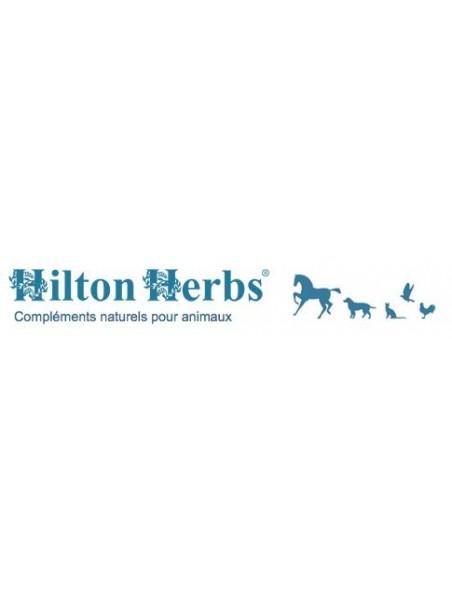 Seaweed & Rosehip - Algues et Cynorrhodon pour chien 125g - Hilton Herbs
