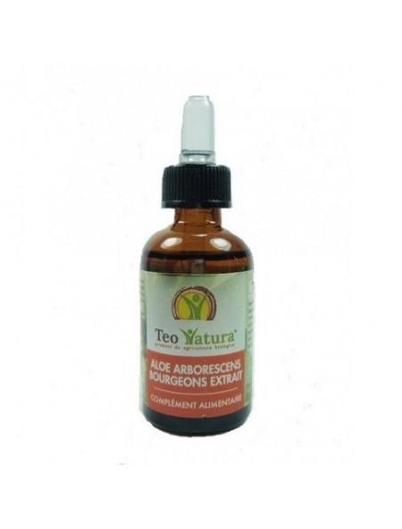 Aloé arborescens bourgeon Bio - Gemmothérapie Digestion et défenses immunitaires 30 ml - Teo Natura
