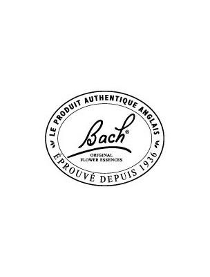 https://www.louis-herboristerie.com/1140-home_default/honeysuckle-chevrefeuille-n-16-nostalgie-20ml-fleurs-de-bach-original.jpg
