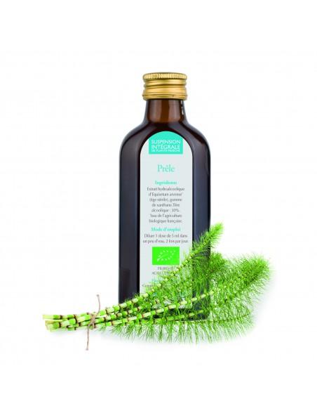 Prêle Bio - Suspension Intégrale de Plante Fraîche (SIPF) 100 ml - Synergia
