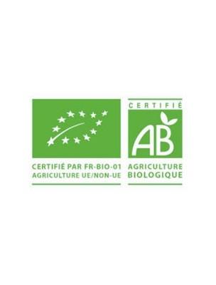 https://www.louis-herboristerie.com/11992-home_default/colon-clean-bio-psyllium-blond-en-poudre-200-grammes-sfb-laboratories.jpg
