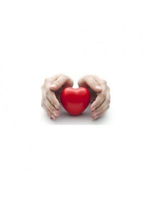 Santé vasculaire par les bourgeons - Les Coffrets de l'Herboriste