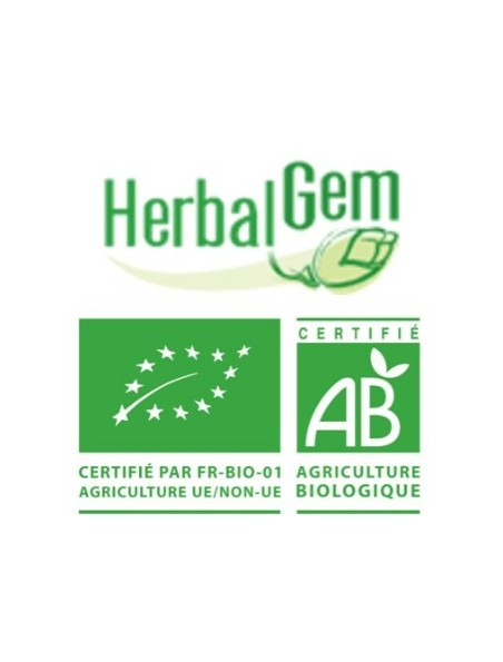 Sapin pectiné bourgeon Bio - Minéralisation 50 ml - Herbalgem
