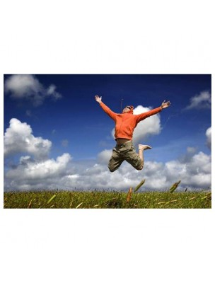 https://www.louis-herboristerie.com/12320-home_default/magnesium-quatro-900-energie-anti-fatigue-60-gelules-be-life.jpg