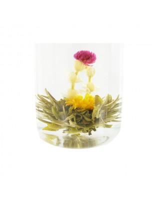Naissance de Bouddha Fleur de thés - Souci, Thé blanc, Amarante