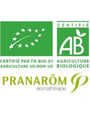 https://www.louis-herboristerie.com/1256-home_default/avocat-bio-huile-vegetale-persea-gratissima-50-ml-pranarom.jpg