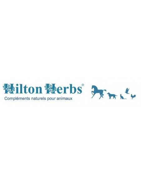 Temperamend Gold - Nerf & Hormones des chevaux 1 Litre - Hilton Herbs
