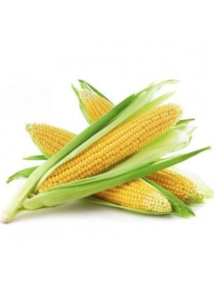 Maïs Bio - Drainage Teinture-mère Zea mays 50 ml - Herbiolys