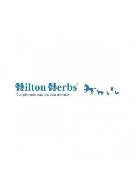Bye Bye Itch - Démangeaisons Chiens & Chevaux 250ml - Hilton Herbs