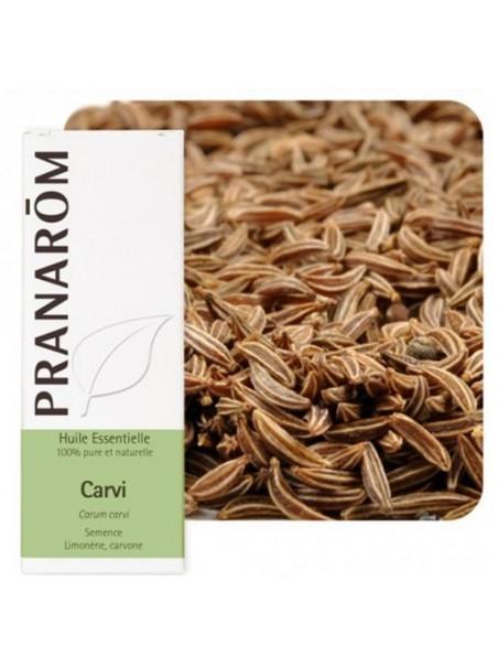 Carvi - Huile essentielle de Carum carvi 10 ml - Pranarôm