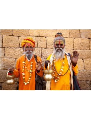 https://www.louis-herboristerie.com/14297-home_default/paix-encens-indiens-16-batonnets-ayurvediques-les-encens-du-monde.jpg