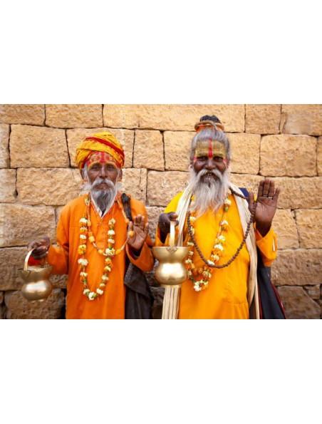Paix encens indiens - 16 bâtonnets ayurvédiques - Les Encens du Monde