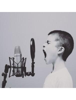 Sirop des chantres Bio - Soulagez vos cordes vocales 250 ml - Herbalgem