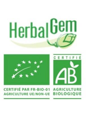 VenaGEM GC17 Bio - Circulation veineuse 50 ml - Herbalgem®