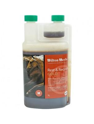 Rest & Recover Gold - Stress & Articulations durant la convalescence des chevaux 1 Litre - Hilton Herbs
