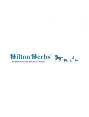 Nav X Gold - Fourbure & Circulation des chevaux 1 Litre - Hilton Herbs