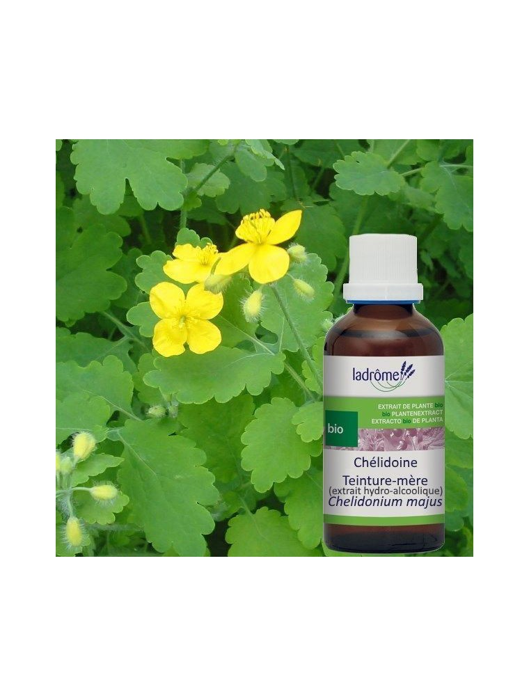 Chélidoine Bio - Verrues Teinture-mère 50 ml - Ladrôme
