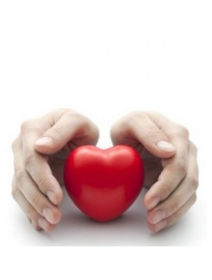 https://www.louis-herboristerie.com/15851-home_default/levure-de-riz-rouge-bio-cholesterol-60-gelules-be-life.jpg
