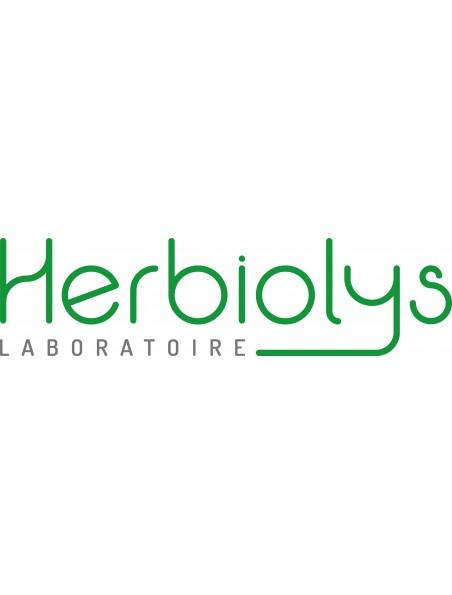 Centaury Centaurée n°4 - Volonté & Determination Bio aux fleurs de Bach 15 ml - Herbiolys