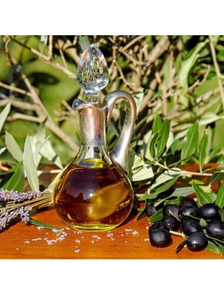 Olive Olivier n°23 - Vitalité Bio aux fleurs de Bach 15 ml - Herbiolys