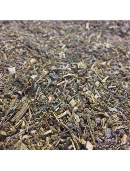 Absinthe Bio - Partie aérienne coupée 100g - Tisane d'Artemisia absinthium L.