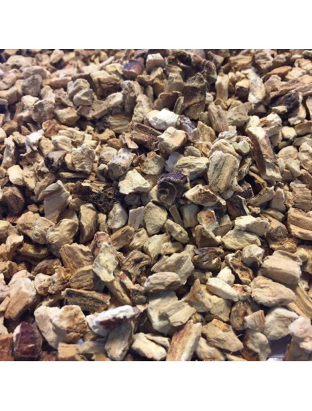 Acore odorant - Rhizome coupé 100g - Tisane d'Acorus calamus L.