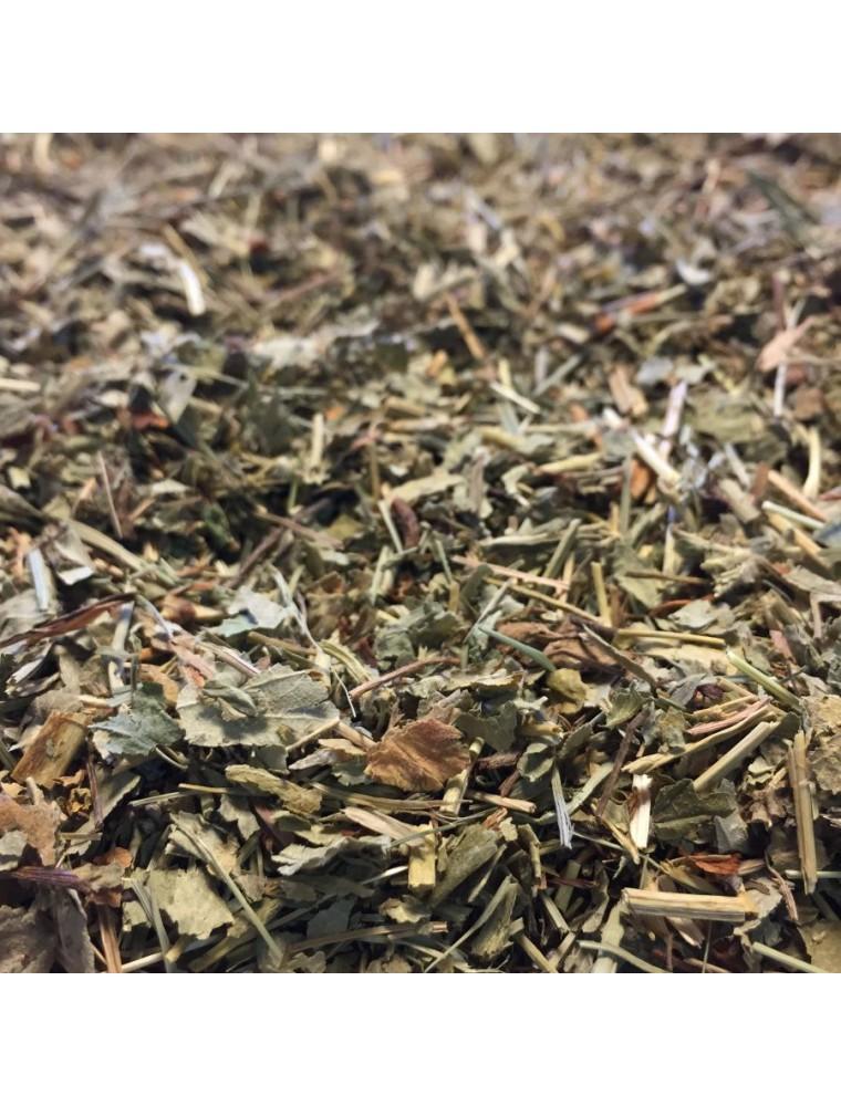 Alchémille - Plante coupée 100g - Tisane d'Alchemilla vulgaris L.