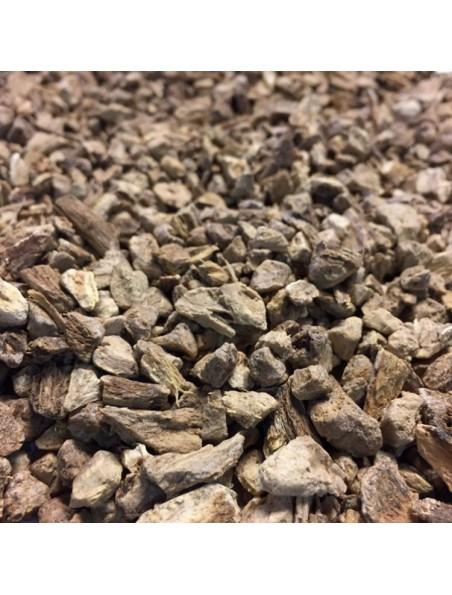 Aunée Officinale Bio - Racine coupée 100g - Tisane d'Inula helenium