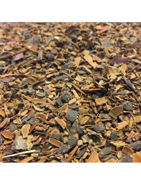 Bourdaine Bio - Ecorce 100g - Tisane Rhamnus frangula
