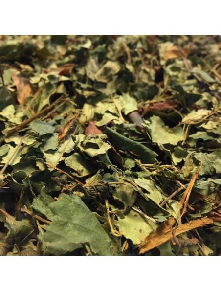 Bouleau Bio - Feuilles coupées 100g - Tisane de Betula pendula Roth