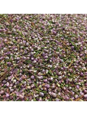 Bruyère Bio Fleurs et feuilles 100g - Tisane Calluna vulgaris (L.) Hull