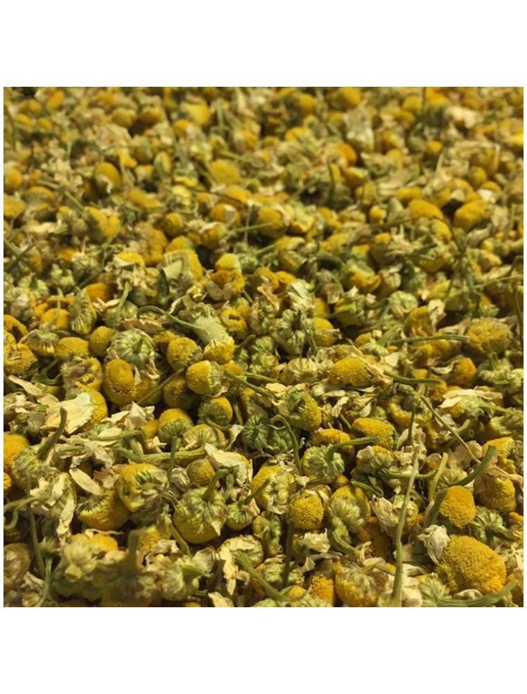 Camomille allemande (Matricaire) Bio - Fleurs 100g - Tisane Matricaria chamomilla L.