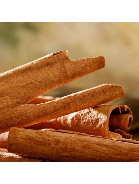 Cannelier Bio - Brisure grattée 100g - Tisane de Cinnamomum verum J. Presl