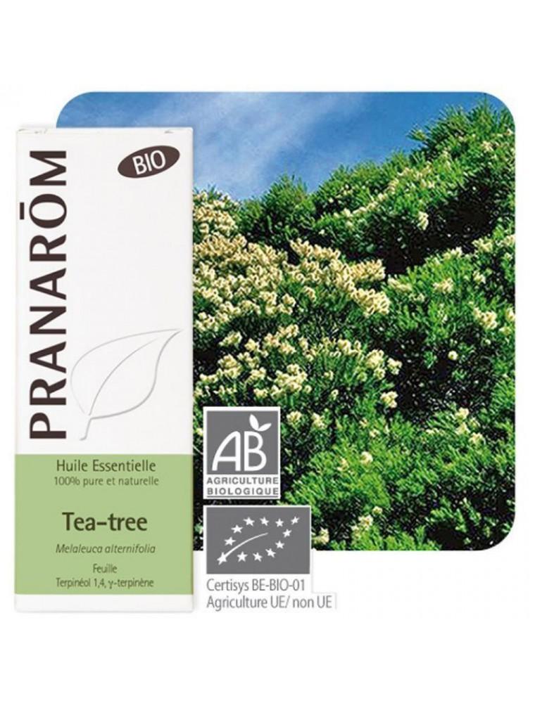 Tea tree Bio (Arbre à thé) - Huile essentielle de Melaleuca alternifolia 10 ml - Pranarôm