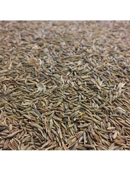 Cumin Bio - Graines 100g - Tisane de Cuminum cyminum L.