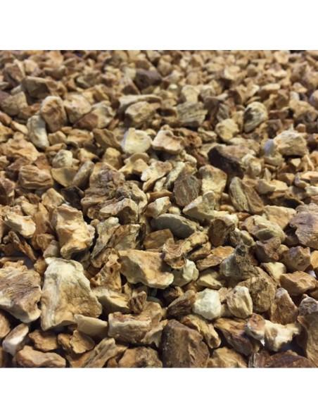 Chicorée sauvage Bio - Racine coupée 100g - Tisane Cichorium intybus L.