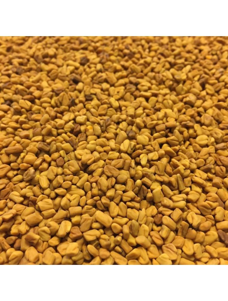 Fenugrec Bio - Graines 100g - Tisane Trigonella foenum-graecum L.