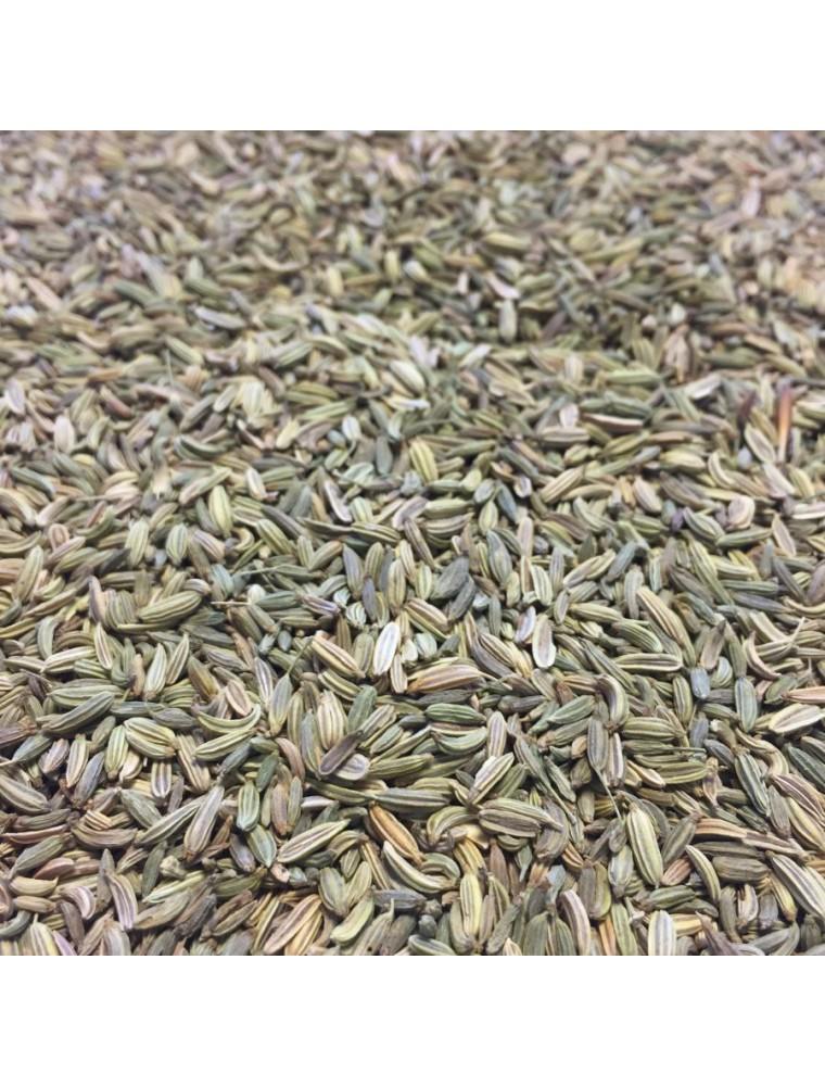Fenouil Bio - Graines 100g - Tisane de Foeniculum vulgare Mill.