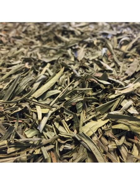 Estragon Bio - Feuilles coupées 100g - Tisane d'Artemisia dracunculus L.