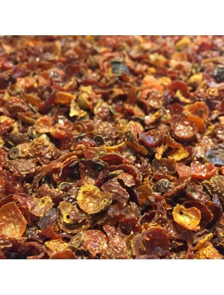 Cynorrhodon Bio - Fruits coupés de l'églantier 100g - Tisane de Rosa canina L.