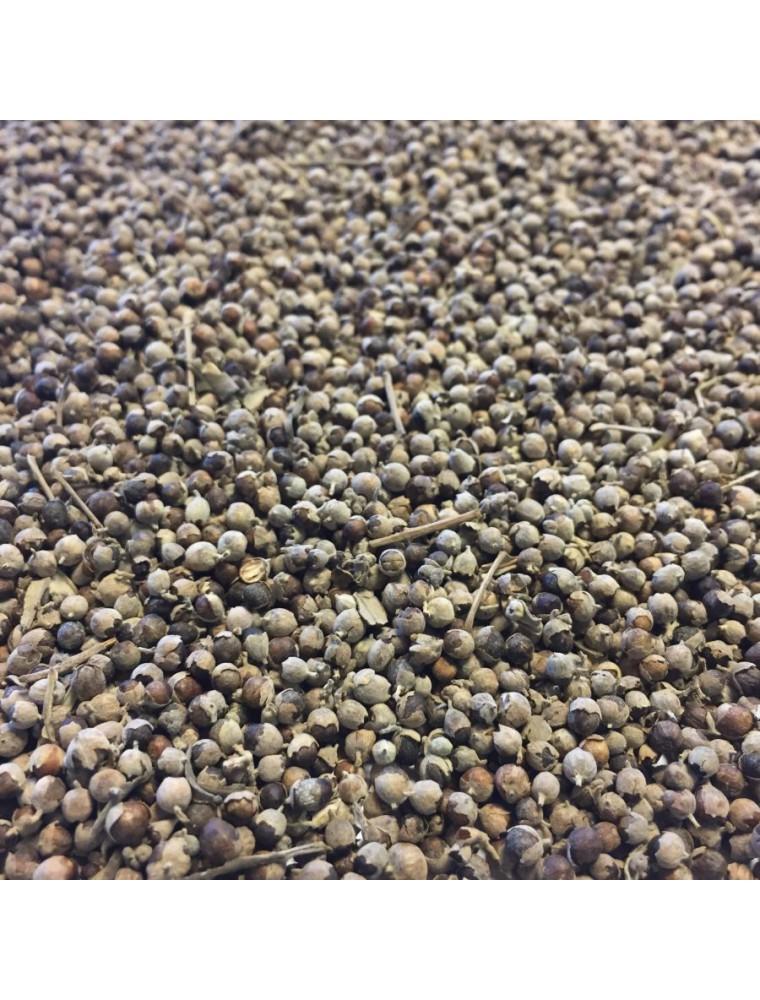 Gattilier Bio - Fruit entier 100g - Tisane de Vitex agnus-castus L.