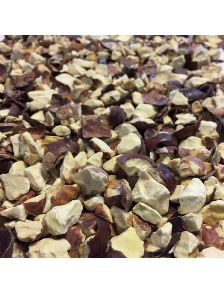 Marron d'Inde Bio - Fruit concassé 100g - Tisane Aesculus hippocastanum L.