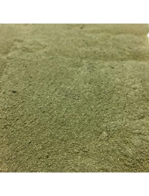 Ortie Bio - Partie aérienne en poudre 100g - Urtica dioica L.