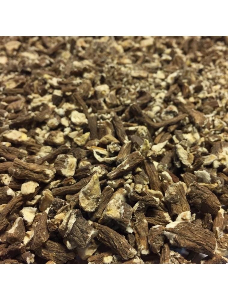 Pissenlit Bio - Racine coupée 100g - Tisane de Taraxacum officinale