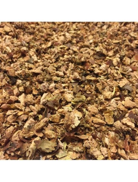 Rhodiola - Racines coupées 50g - Tisane de Rhodiola rosea L.