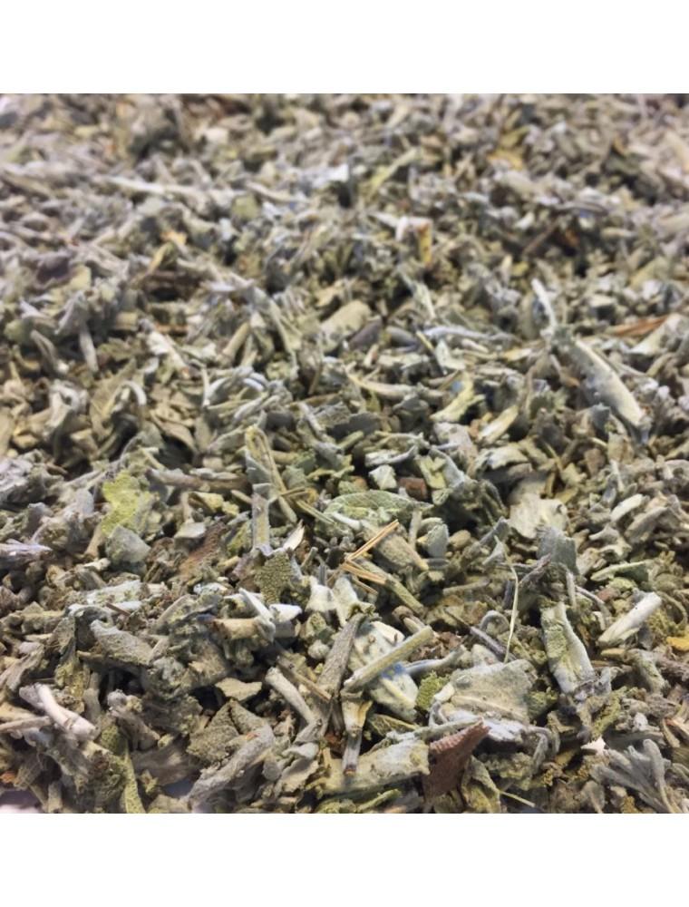 Sauge Bio - Feuilles brisures 100g - Tisane de Salvia officinalis L.