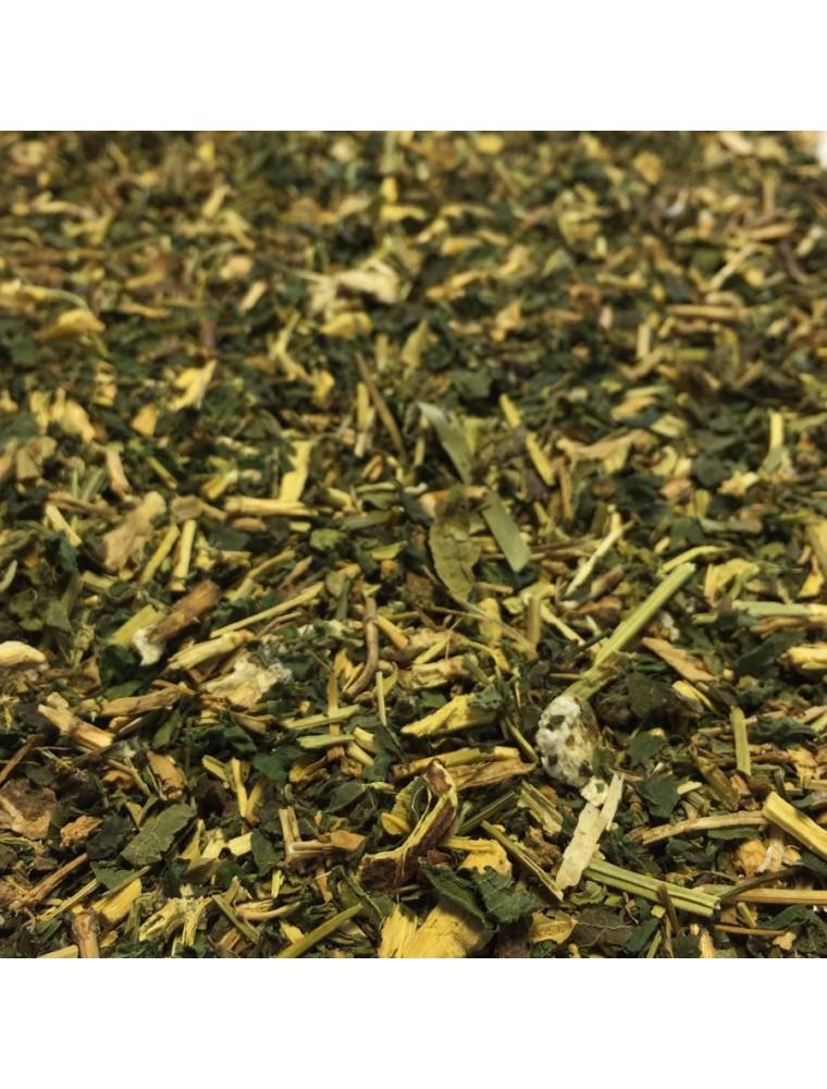 Tisane Drainante Bio - 100 grammes