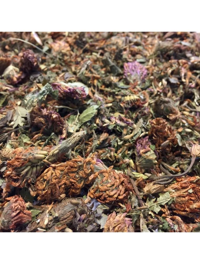 Trèfle rouge - Fleurs 100g - Tisane de Trifolium pratense L.